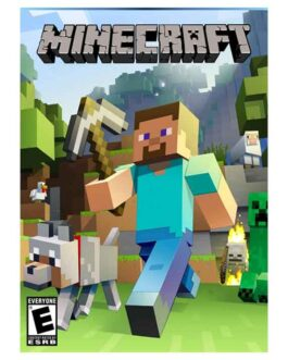 Minecraft – Windows 10